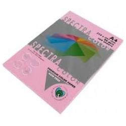 Бумага A4 'Spectra ' ПАСТЕЛЬ 100л/80гр  № 170 ( PINK ) Китайская роза