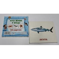 """Карточки обучающие (18 карточек) """"Хто живе в воді """""""