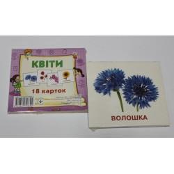 """Карточки обучающие (18 карточек) """"Квіти"""""""