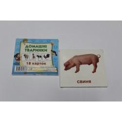 """Карточки обучающие (18 карточек) """"Дикі тварини"""""""