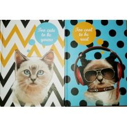 """Тетрадь А-5 тв.пер. А5081 """"Cool cats"""" 120л, клетка"""