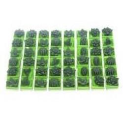 Игрушка-напухашка 8081 Кактус зеленый, в дисплее большой(48шт/уп)