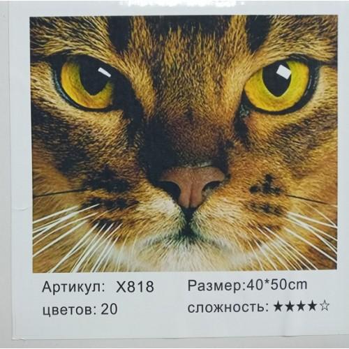 """Картина-раскраска по номерам на холсте 40*50  X818 """"Котик"""" (н-р акрил.красок 20цв+3 кисти)"""